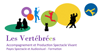 logo-vtbees-pour-site